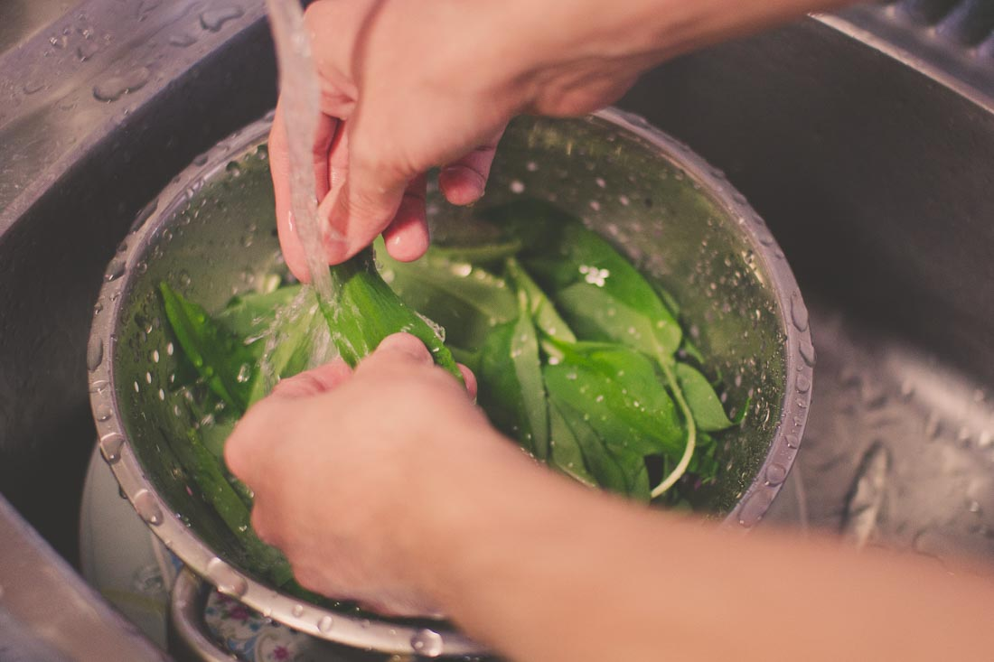 Waschen Frische Bärlauchblätter